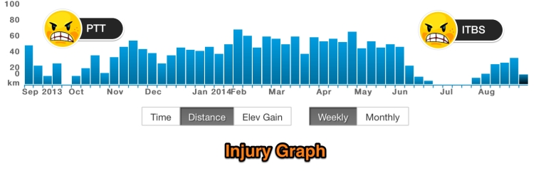 injury graph