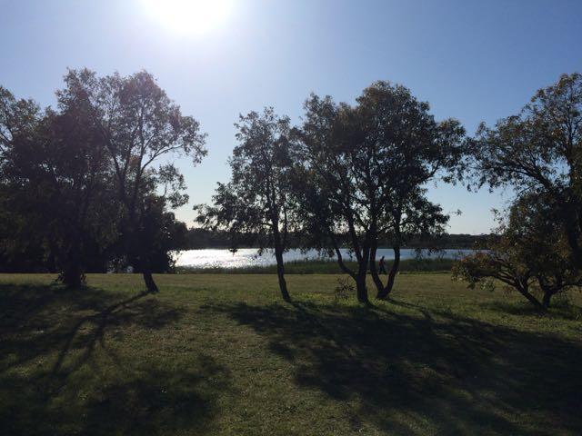 Lake Gwelup